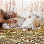 גברים וחיות אחרות - קבלו את לוח השנה של ALL INCLUDED